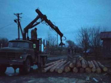 У Млинівському районі поліція встановлюватиме походження деревини