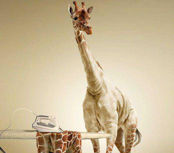 Undressing a Giraffe in Photoshop tutorial