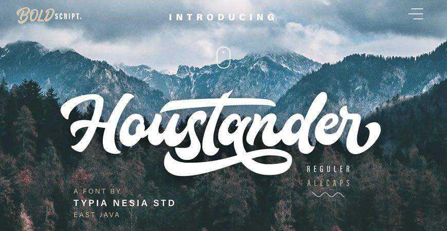 Houstander Font-Duo logo font typeface logotype