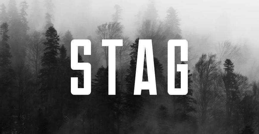 Stag Modern Display logo font typeface logotype