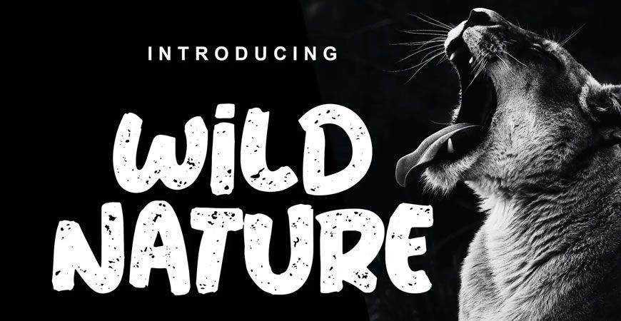 Wild Nature Clean Textured logo font typeface logotype