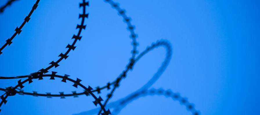 A barbed wire fence.