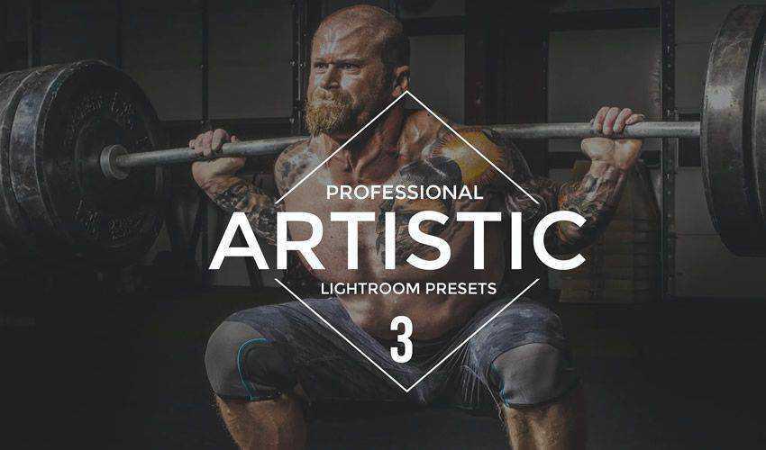Artistic vol 3 Lightroom Presets