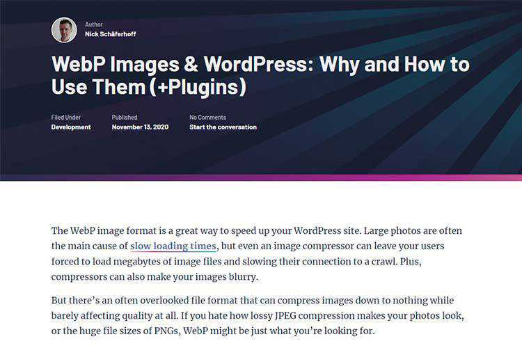 Example from WebP Images & WordPress: Why and How to Use Them (+Plugins)
