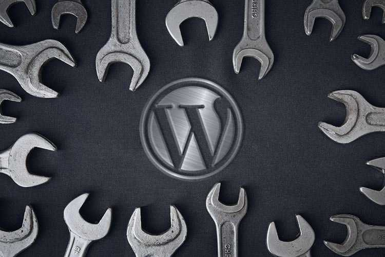 Things You Should Know Before Customizing WordPress