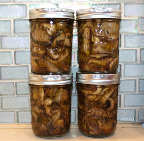 oil preserved mushrooms