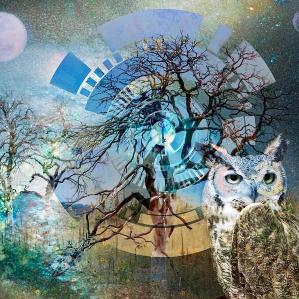 """Just Dream - """"Owl"""""""
