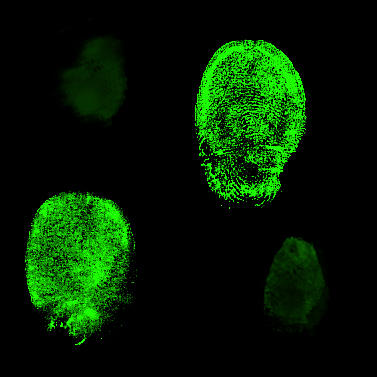 CSI-fingerprints-black-green