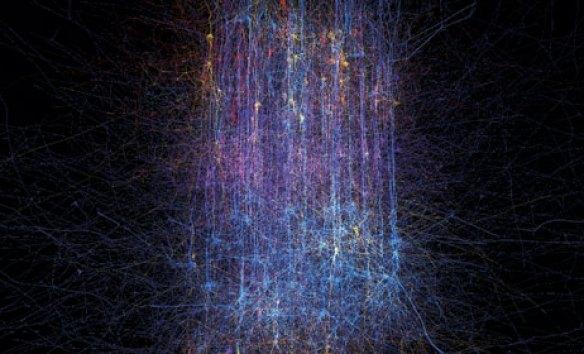 50-neuronas-ibm-blue-gene