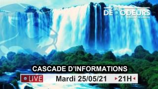 Cascade d'informations !!! – 25/05/2021