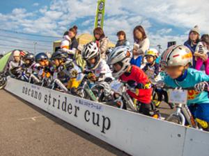Kick Bike Stider Start