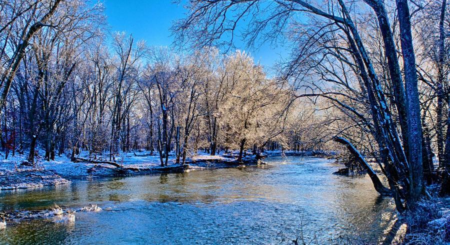 Ice coated trees along Floyd's Fork
