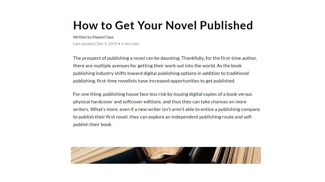 Novel Guide Blog