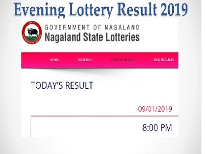 Nagaland Lottery Dear Eagle Results (11/09/2019) Released