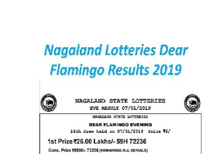 Nagaland Lottery Dear Flamingo Results 09/09/2019 Released