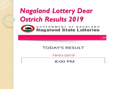 Nagaland Lottery Dear Ostrich Results 07/09/2019 Released