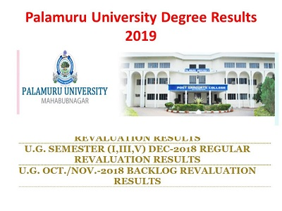 Palamuru University Degree Results 2019(May)-Available 2nd 4th 6th