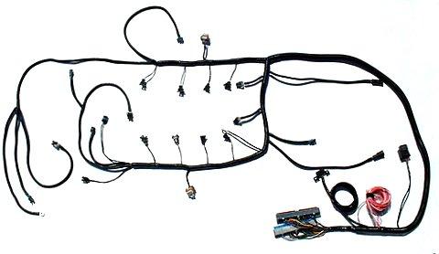 ssw ls1 wiring harness and tuning ls1 wiring standalone wiring rh speedscenewiring com ls swap wiring harness diy wiring harness ls1 swap
