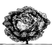 Planter som vokser og mødre som tegner streker i dørkarmen