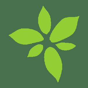 NFP Web | Not for Profit web services