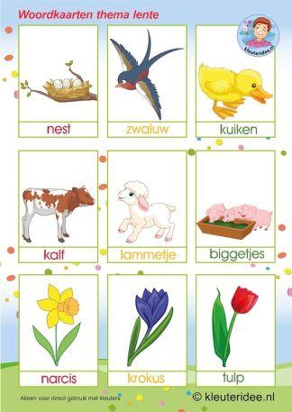 woordkaart lente