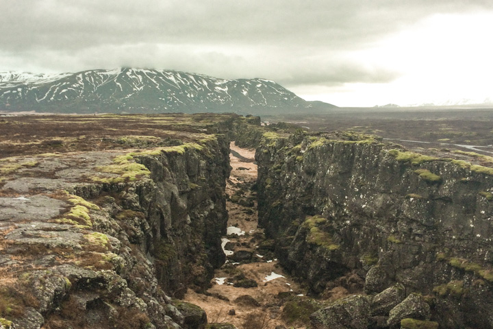 spellbound travels thingvellir national park