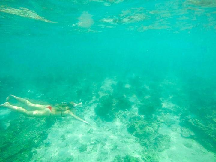 spellbound travels ko tao snorkelling