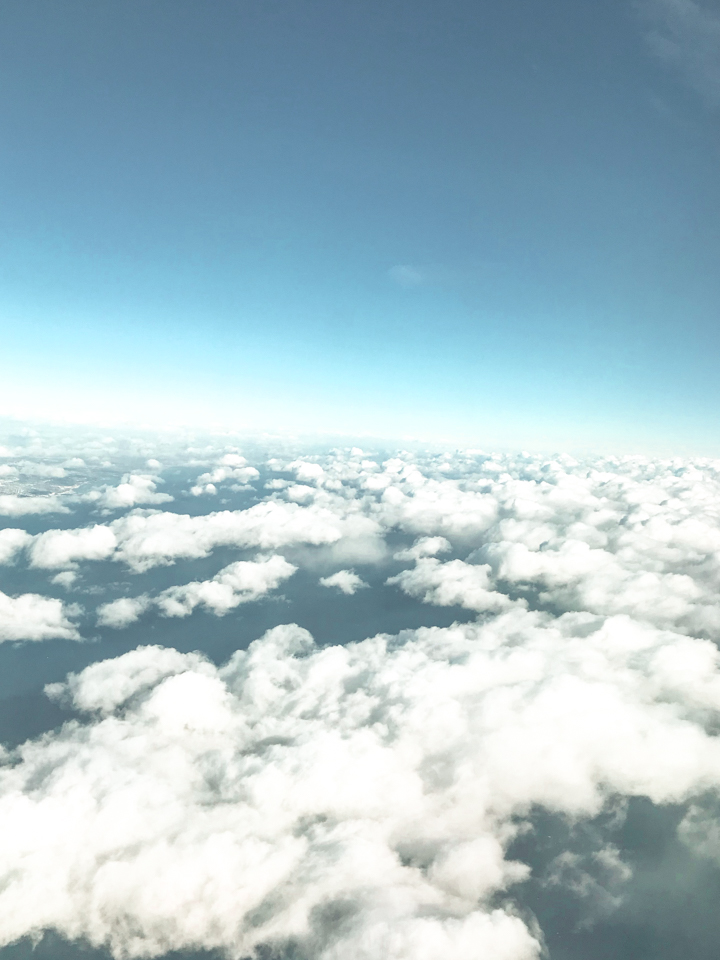 spellbound travels airplane clouds