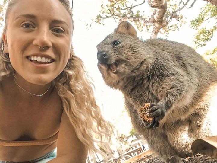spellbound travels quokka selfie rottnest island