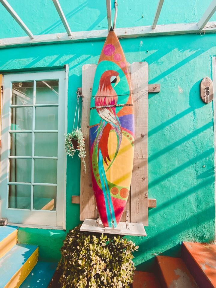 spellbound travels ith beach bungalow surf hostel pacific beach