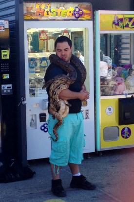 Python guy, Coney Island
