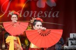 Hello Indonesia - Indonesian Event London 2014 pic 34