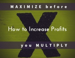 How to Increase Profits Maximize Before You Multiply