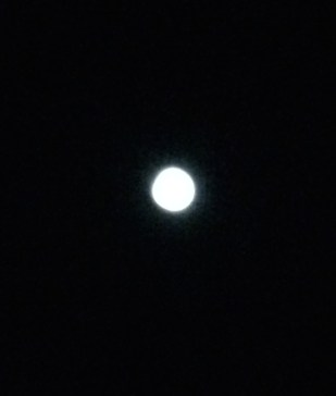 Moon, are you mocking me or just keeping me company?
