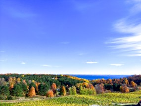 Beauty of Michigan