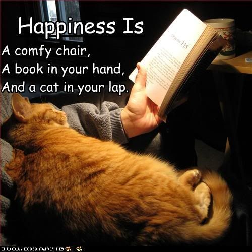 If you love to read and have a cat, you get this. Make room on your lap so you can both read the book.