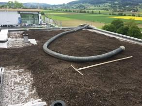 StS-Spenglertech-Neubau-Hohenrain-Ermensee-Hochdorf-Hitzkirch-Schongau-Aesch-Holzbau-Spengler-Flachdach-Abdichtung-Sanierung-Flüssigkunststoff-Allerlei (5)
