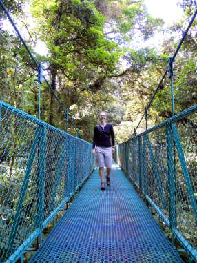 Exploring the cloud forest canopy