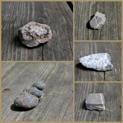 Look at all these fun rocks!