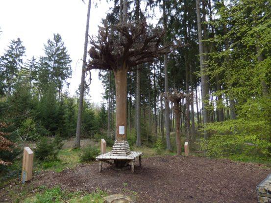 20160904_12 Erlebnispfad Binger Wald