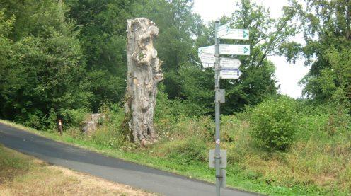 28.07.2019 - Rhön - Richtung Thüringer Hütte