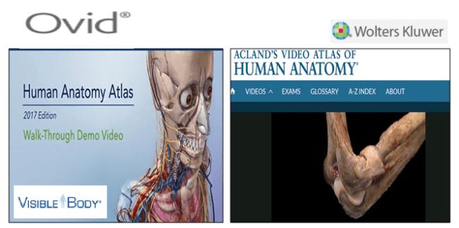 Anatomijos-atlasai
