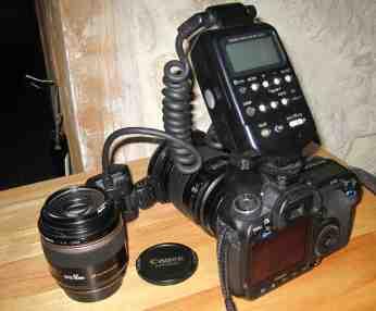 Canon Eos 50D + Flash MT 24 EX dorsal