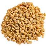 fenugreek- seeds -methi-image buy indian spice online spiceitupp