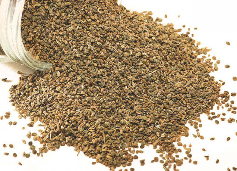 what is carom seed and their health benefits. a blog post by spiceitupp