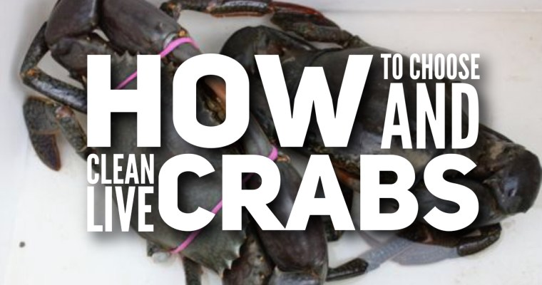 How to choose and clean live crabs – any type of crabs