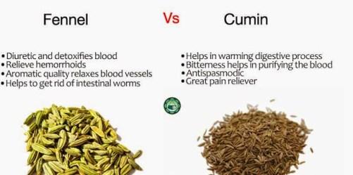 Ayurvedic-Remedies-Fennel-vs-Cumin-Copy