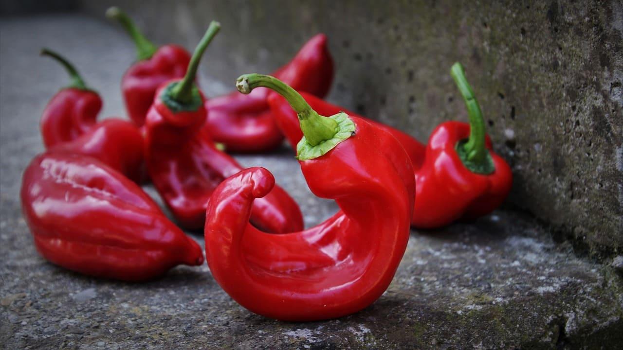 Cum este fabricată paprika