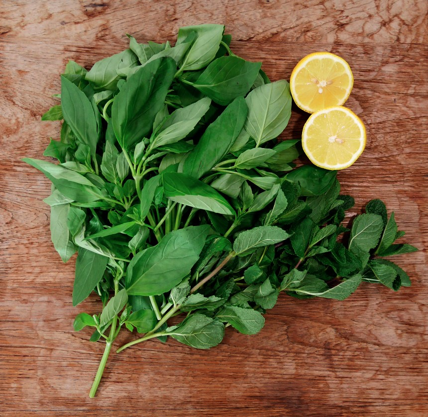 basil mint lemon
