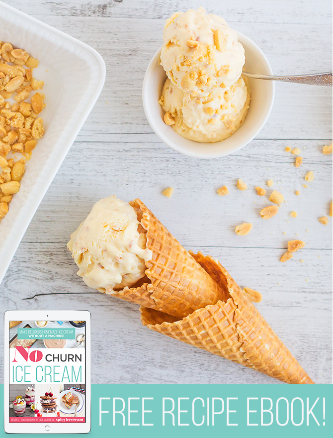 Peanut Butter Crunch Ice Cream Recipe available only in my FREE No Churn Ice Cream Ebook!